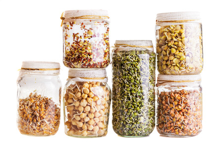 pantry: Stack of Different Sprouting Seeds Growing in a Glass Jar Isolated on White Background Stock Photo