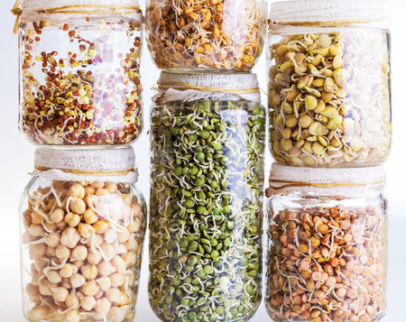 sprouting: Stack of Different Sprouting Seeds Growing in a Glass Jar Isolated on White Background Stock Photo