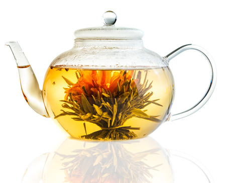 Studio shot of Tea Flower in a Clear Teapot Isolated on White Background photo