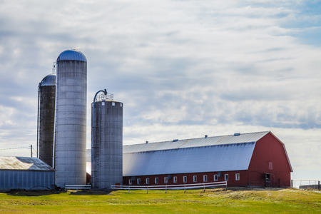 factory farm: Traditional Red Farm and Silos - Food Industry