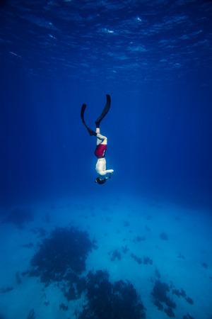 breath hold: Underwater image of a Freediver with fins going down