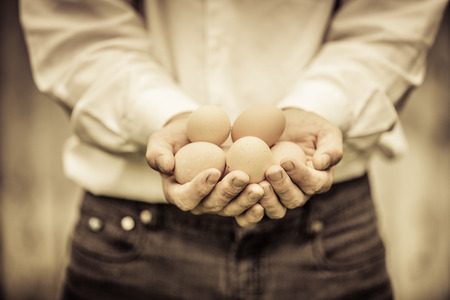 agronomist: Closeup of Farmer Holding Eggs in front of a Farm Stock Photo