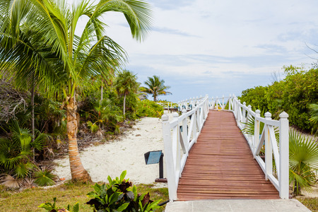 xxxl: Beautiful Romantic Walkway to go to the Beach Stock Photo