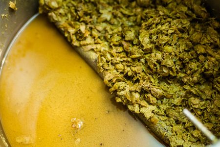 leftovers: Left-Overs of Hops and Essential Oils of the mash into a Stock Pot after the Home Brewing Process