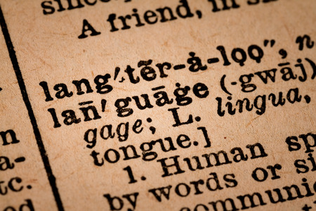 old vintage: Close-up of an Old Vintage Dictionary showing the Word LANGUAGE