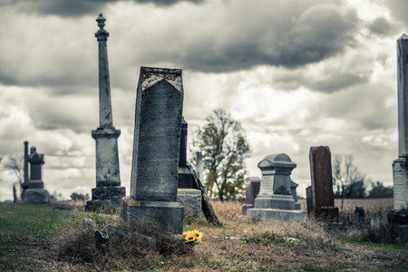 Sunflowers Bouquet in a Sad Cemetery on a Cold Day of Autumn. 免版税图像