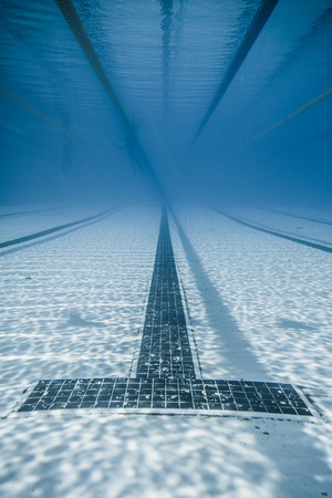 lane lines: Underwater View of a Black Line Starts and Corridor of an sports competition 50m Pool