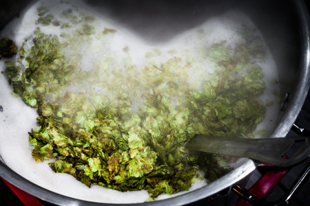 Homebrewers Boiling Kettle on the burner with lots of whole dried hops addition and vapor.