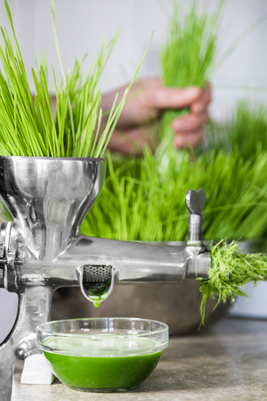 Extraction of Wheatgrass in Action on the Kitchen Countertop using a Metal Manual Juicer
