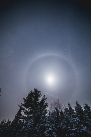Lunar Halo around the Full Moon in Forest during the Winter Stockfoto