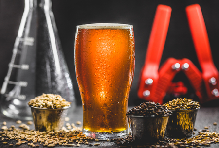 Homebrew Honey Brown Beer, Different Barley and Brewing Equipment in Studio with Dramatic Light 스톡 콘텐츠