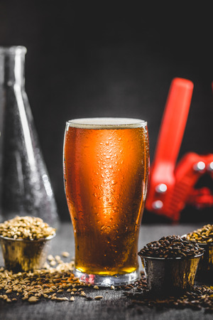 Homebrew Honey Brown Beer, Different Barley and Brewing Equipment in Studio with Dramatic Light 写真素材