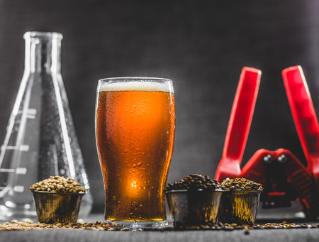 Homebrew Honey Brown Beer, Different Barley and Brewing Equipment in Studio with Dramatic Light Archivio Fotografico