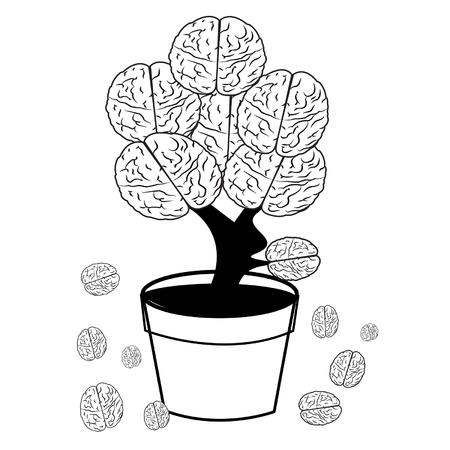 brain in pot on white background Vector