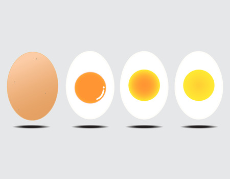 Vector illustration of boiled egg gray background