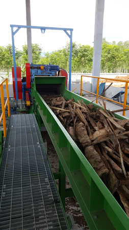 Wood chipper process : wood Transport by conveyor belt to wood chipping machine Stockfoto
