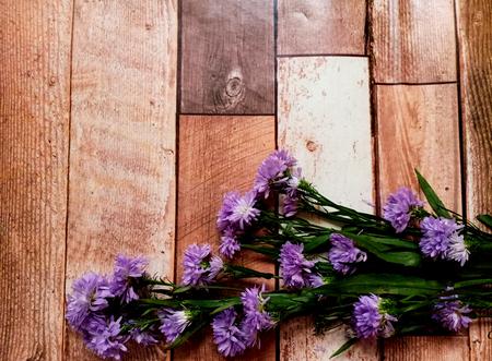 Fleur violette sur fond de bois