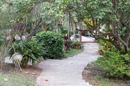 Stairway sidewalk in the garden.