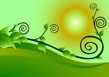 creeping plant flora and sun, vector, Illustrator