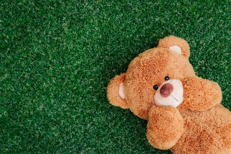 christmas table: Cute teddy bear on green grass background