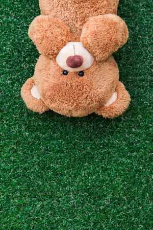 teddy: Cute teddy bear on green grass background