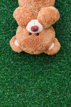 osos navideños: oso de peluche lindo en el fondo de hierba verde Foto de archivo