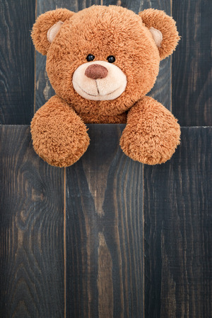 bear s: Cute teddy bear with old wood background