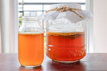 Kombucha tea popular fermented healthy drink natural high probiotics.