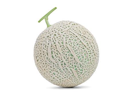 Fresh sweet green melon on over white background