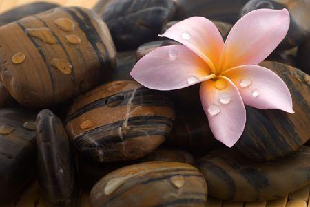 bali massage: Frangipani flower and polished stone on tropical bamboo mat