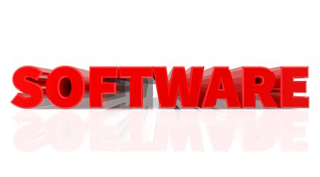 3D SOFTWARE word on white background 3d rendering