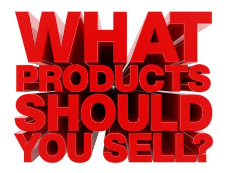 WHAT PRODUCTS SHOULD YOU SELL ? word on white background illustration 3D rendering