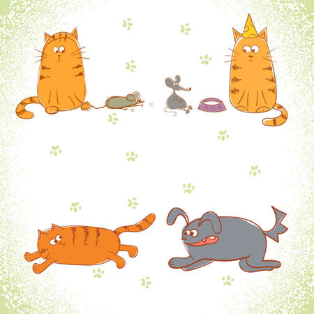 funny cats: Set of illustrations with funny cats. Illustration