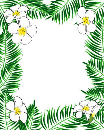 aloha: Tropical frame. Aloha style. Palm leaves and flowers on the white