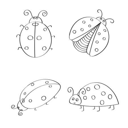 funy: Set of hand drawn ladybugs. Outline. Vector collection of ladybirds. Illustration