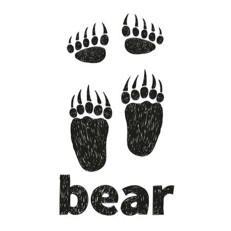 hind: Bear paws, front and hind. Doodle vector illustration of bears footprints. Illustration