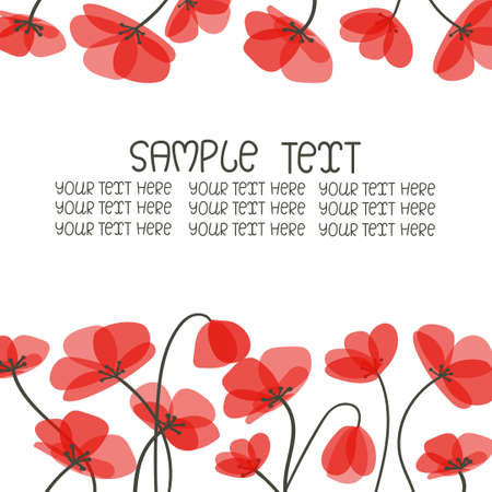 poppies: Floral background with beautiful poppies isolated on white.