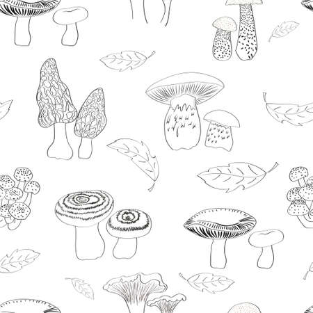 morel: Mushrooms seamless pattern. Hand drawn russulles. morels, porcini, chanterelles and agarics isolated on white. Repeating vector background. Illustration