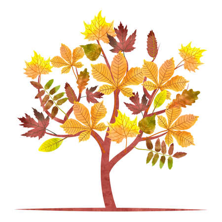 chestnut tree: Abstract autumn tree with watercolor maple, oak, chestnut leaves. Vector fall illustration.