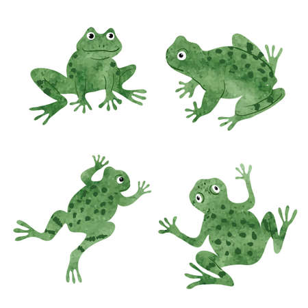 Set of cute watercolor frogs isolated on white. Vector illustration. 일러스트