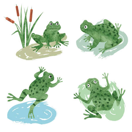 Set of cute watercolor frogs isolated on white. Vector illustration.  イラスト・ベクター素材