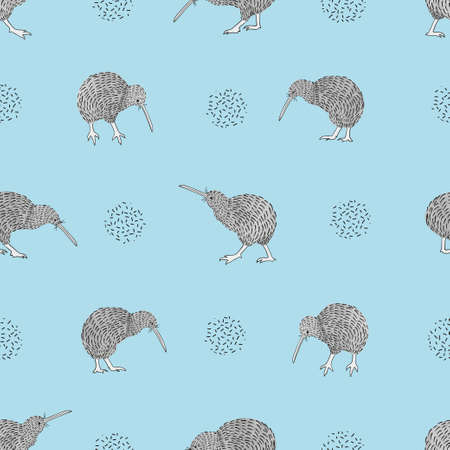 Kiwi birds on blue seamless pattern. Vector background.