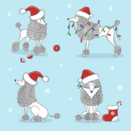 Cute poodle dogs set. Merry Christmas and Happy New Year greetings. Vector illustration.