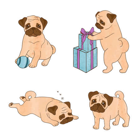 humor: Set of cute watercolor pugs isolated on white. Vector illustration of cartoon dogs.