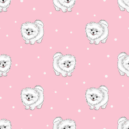 Seamless pattern with cute white pomeranian puppy on pink. Vector dogs background. Vettoriali