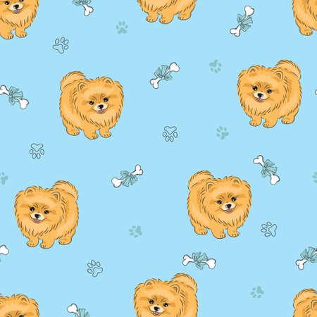 Naadloos patroon met leuk puppy Pomeranian op blauw. Vector honden achtergrond.