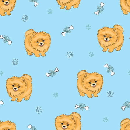 Seamless pattern with cute pomeranian puppy on blue. Vector dogs background.