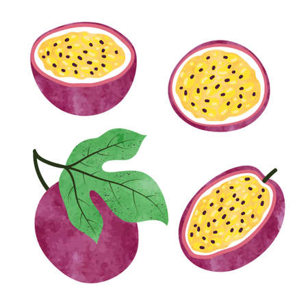 Set of watercolor passion fruit isolated on white. Vector illustration.