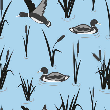 Seamless pond pattern with reeds and ducks. Vector water background. Stock Vector - 120094482