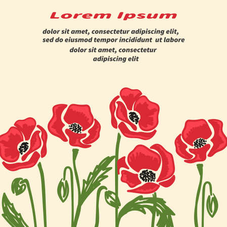 Bright doodle poppy flowers vector illustration. Remembrance day poster.